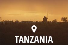 Studierejser til Tanzania