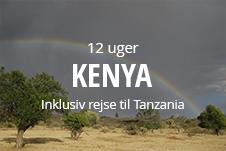 Kombiner højskole med at rejse på vore slange højskoleophold til Kenya